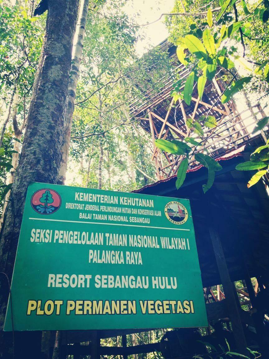 Pemerintah Kota Palangka Raya Menara Pandang 12 Meter Nikmati Taman