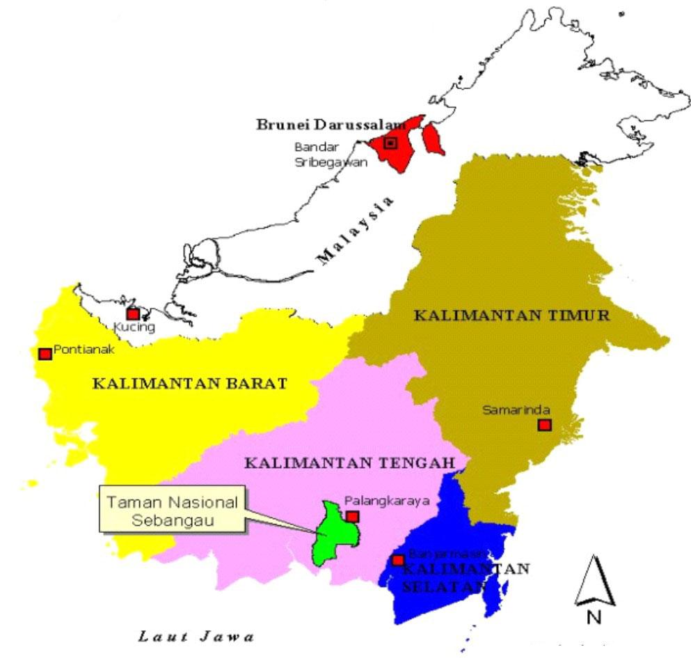Sebangau National Park Asian Itinerary Taman Nasional Kota Palangkaraya