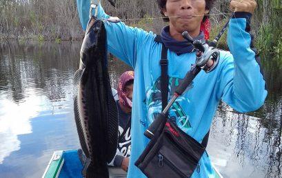 Sebangau Taman Nasional Asiknya Mancing Kota Palangkaraya