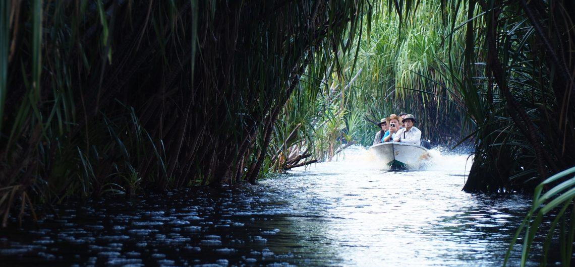 Sehari Taman Nasional Sebangau Borneo Tour Kota Palangkaraya