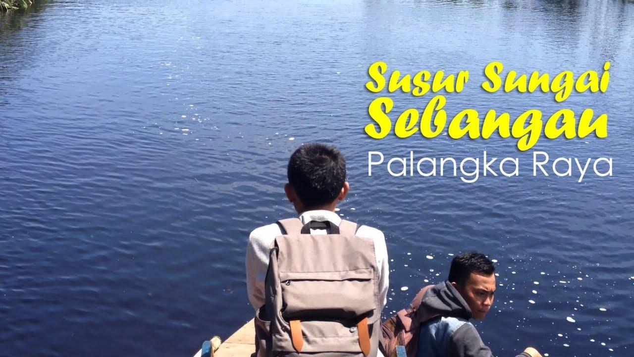 Susur Sungai Danau Sebangau Youtube Taman Nasional Kota Palangkaraya