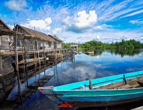 Taman Nasional Sebangau National Park Ayo Video Promosi Kota Palangkaraya