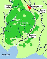 Taman Nasional Sebangau Wikipidia Basa Banjar Insiklupidia Bibas Kota Palangkaraya