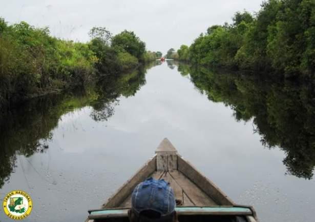 Taman Nasional Sebangau Wisata Indonesia World Kota Palangkaraya