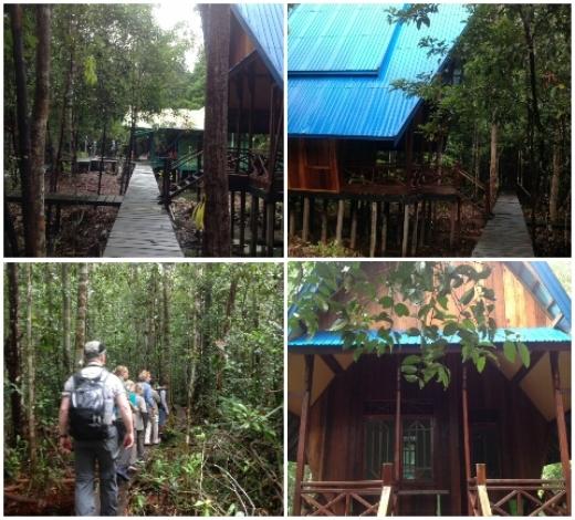 Tiga Destinasi Wisata Taman Nasional Sebangau Menarik Wisatawan Berkunjung Kota