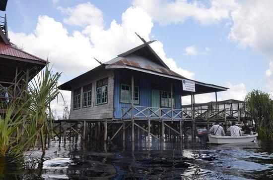 Tn Sebangau Andalan Ekowisata Palangka Raya Dayak News Taman Nasional