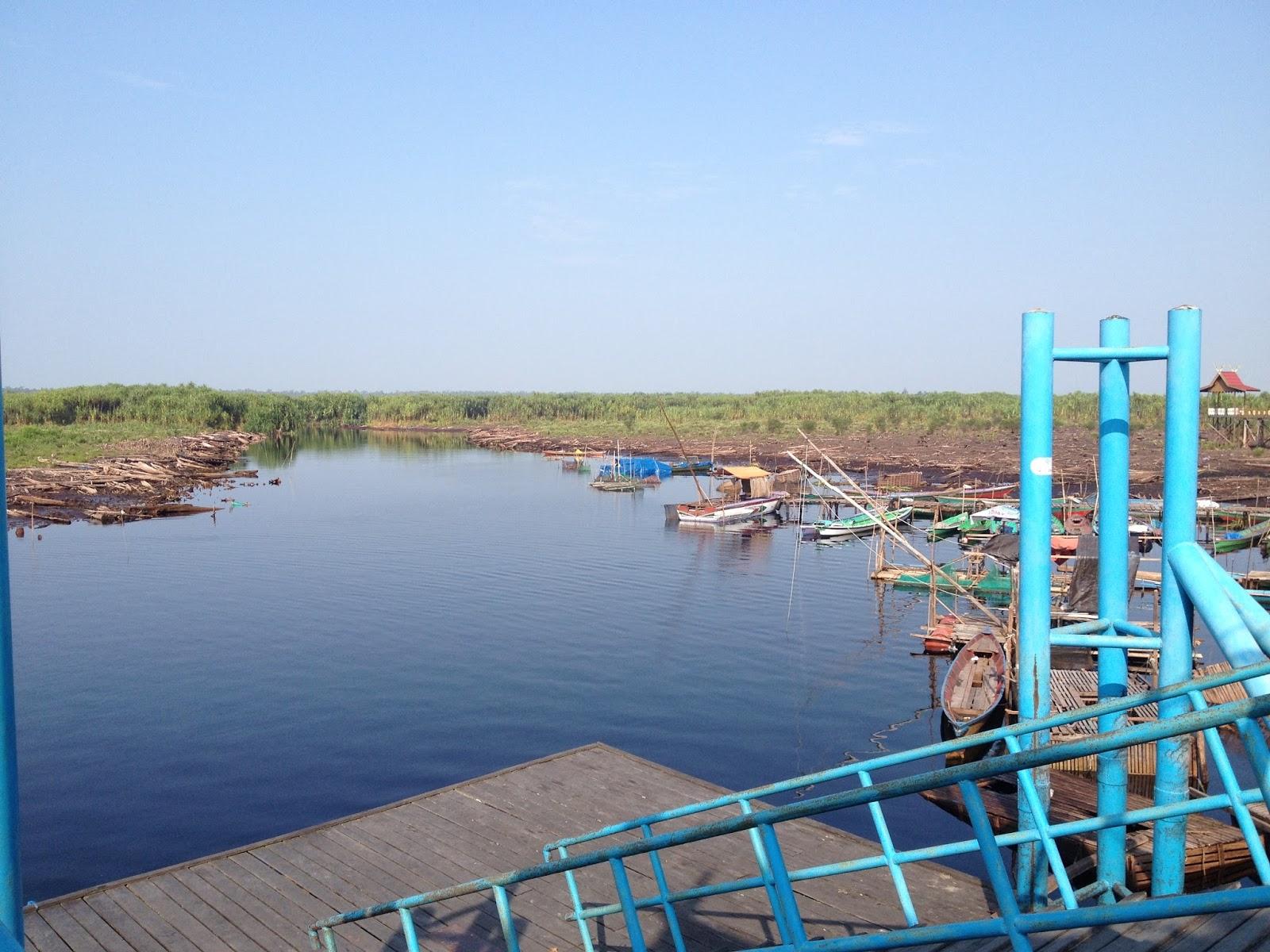 Workcation Taman Nasional Sebangau Kota Palangkaraya