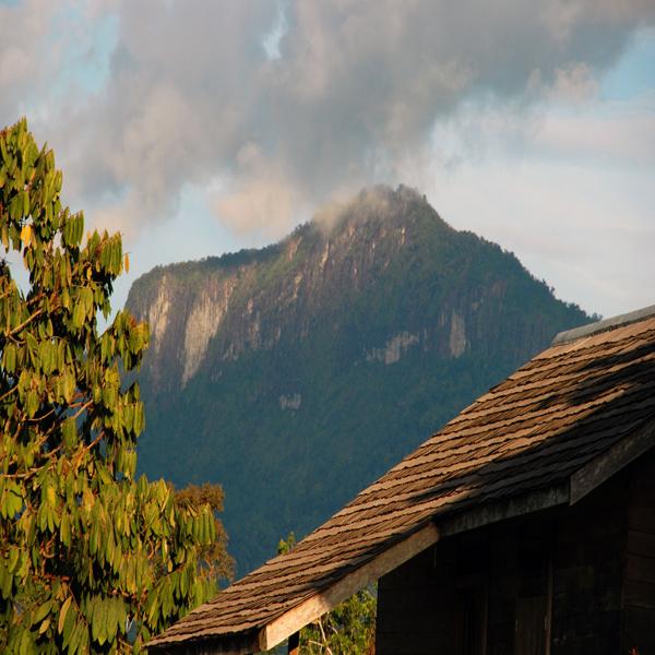 10 Tempat Wisata Palangkaraya Alami Indah Lihat Id Taman Nasional