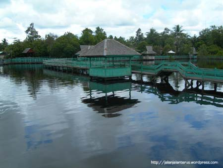 Info Kalimantan Danau Tahai Berjarak Sekitar 30 Km Pusat Kota