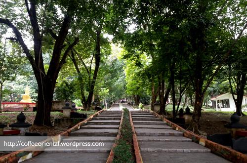 Wisata Mistis Bukit Siguntang Palembang Koh Huang Terbentuk Gundukan Tanah