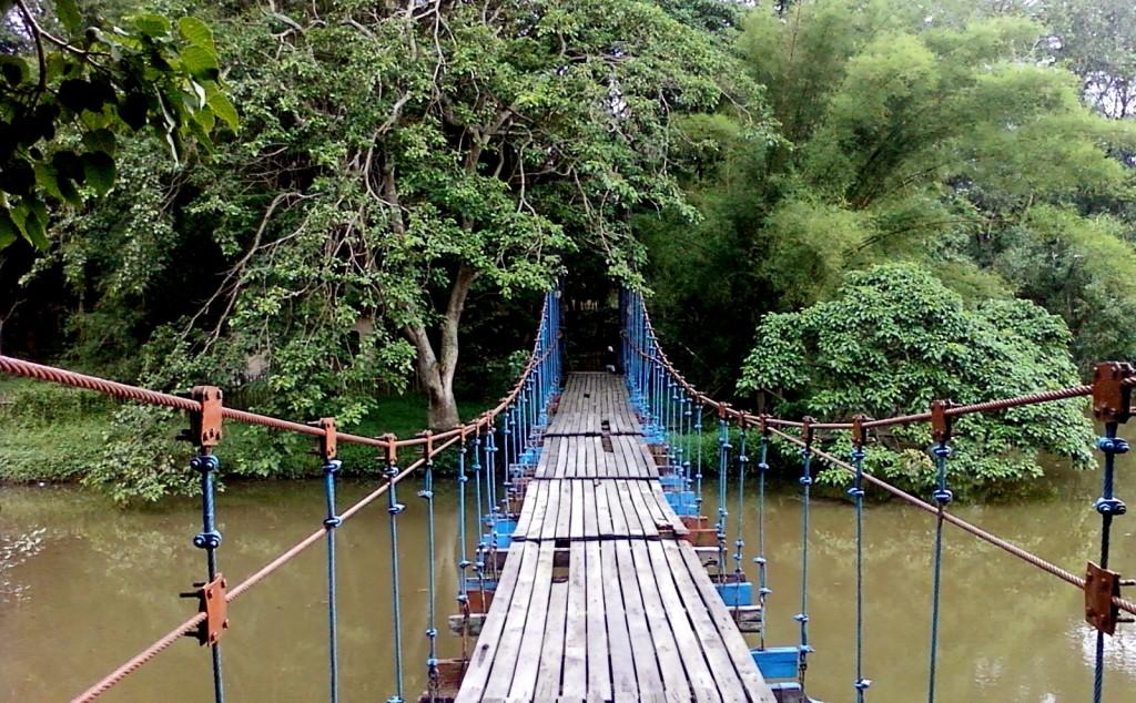 30 Daftar Tempat Wisata Palembang Sumsel Terkenal Pulau Taman Hutan