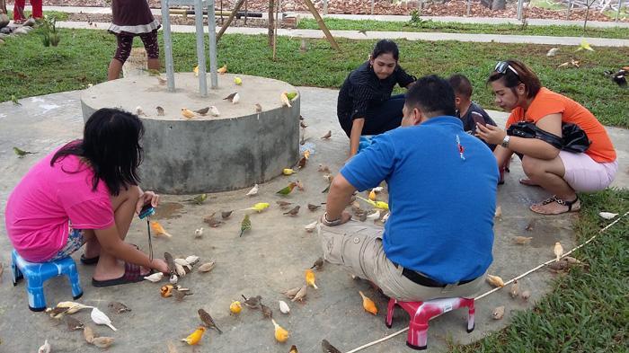 Taman Burung Pertama Kota Palembang Tribunnews Tempat Terletak Kawasan Opi