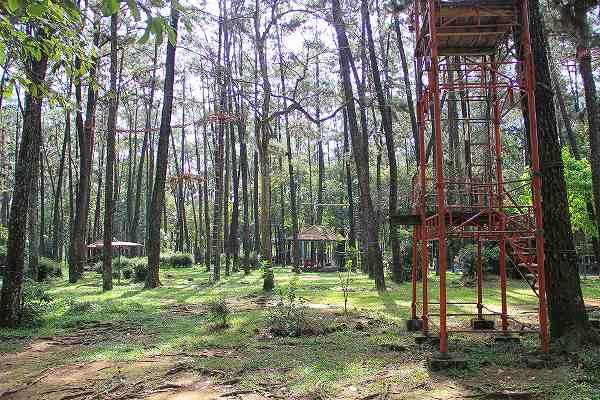 5 Tempat Wisata Alam Palembang Populer Sayang Taman Hutan Punti