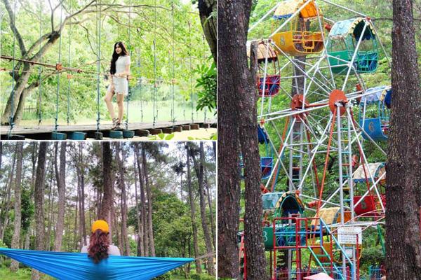 Panduan Lengkap Wisata Palembang Blog Ivacanza Hutan Punti Kayu 2