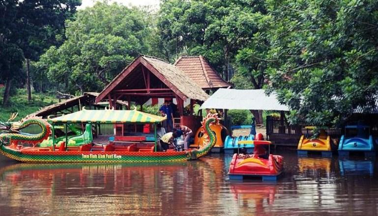 Tempat Wisata Alam Palembang Ayo Traveling Sepuasnya Hutan Punti Kayu