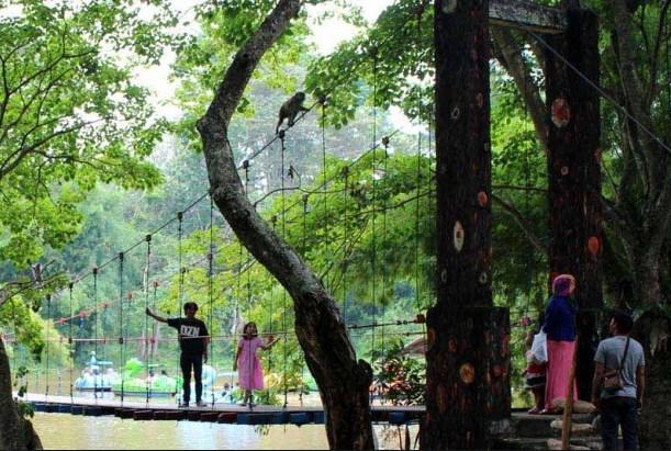 35 Tempat Wisata Palembang Hits Populer Daftar Taman Hutan Punti