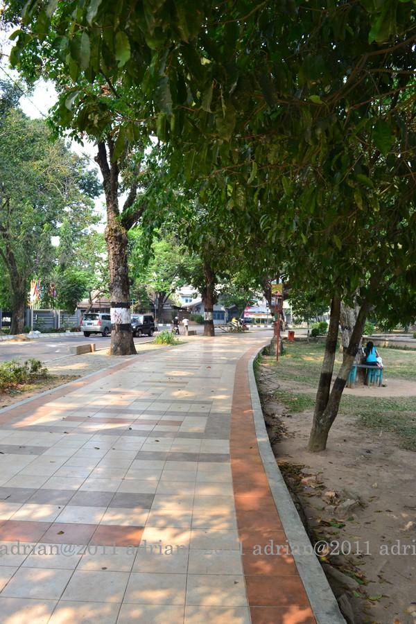 Taman Wisata Kambang Iwak Palembang Suasana Hijau Rimbun Keluarga Kembang