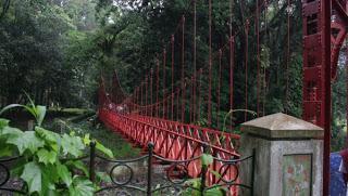 Mitos Pacaran Jembatan Merah Bogor Segala Unik Dunia Kota Palu