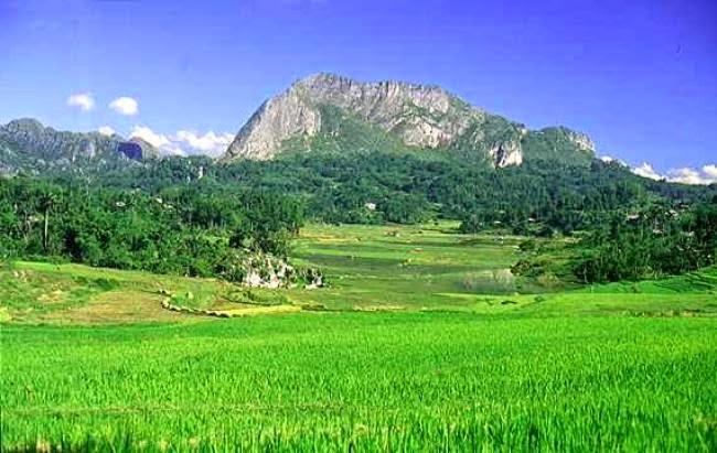 Obyek Wisata Menawan Sulawesi Tengah Eloratour Lembah Bada Taman Nasional