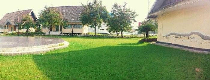 Outdoors Palu Sulawesi Tengah Taman Budaya Ntovea Kota