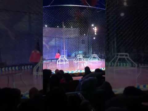 Acara Sirkus Lap Purna Mtq Pekanbaru Youtube Lapangan Kota
