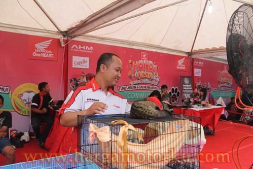 Komunitas Musang Lovers Pekanbaru Jakarta Medan Indonesia Surabaya Tangerang Bandung
