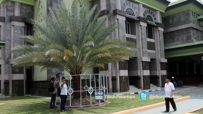 Foto Inilah Pohon Kurma Berbuah Mesjid Agung Nur Masjid Raya