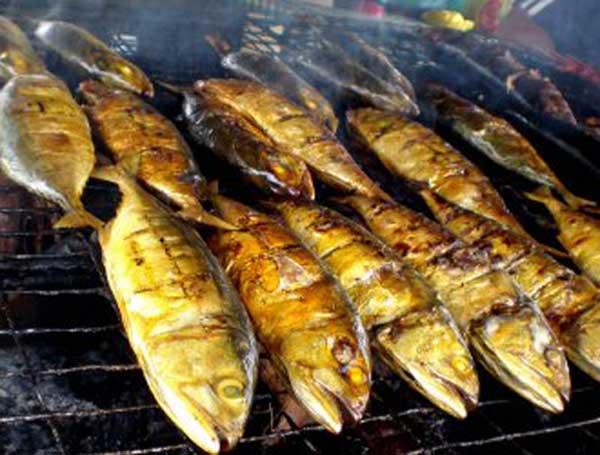Ikan Selais Spesies Kebanggaan Riau Sumatra Masakan Khas Tugu Tiga