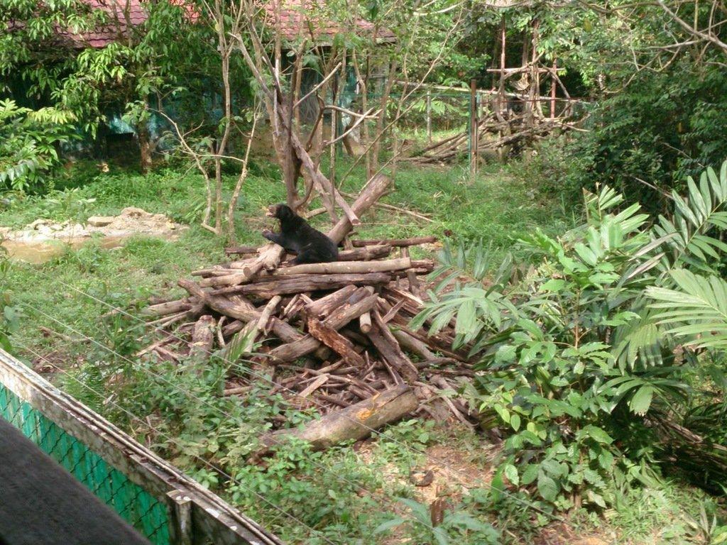 8 Samarinda Indonesia Trip101 Discover Hidden Spots Balikpapan Oil City