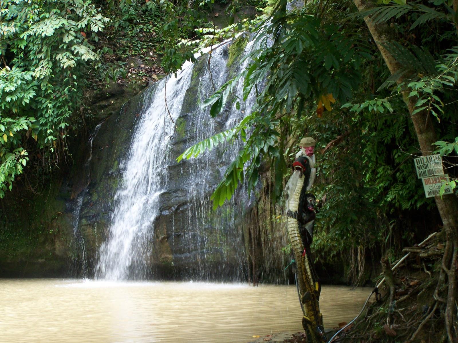 Air Terjun Tanah Merah Kealamian Indah Kalimantan Timur Dunia Jungle
