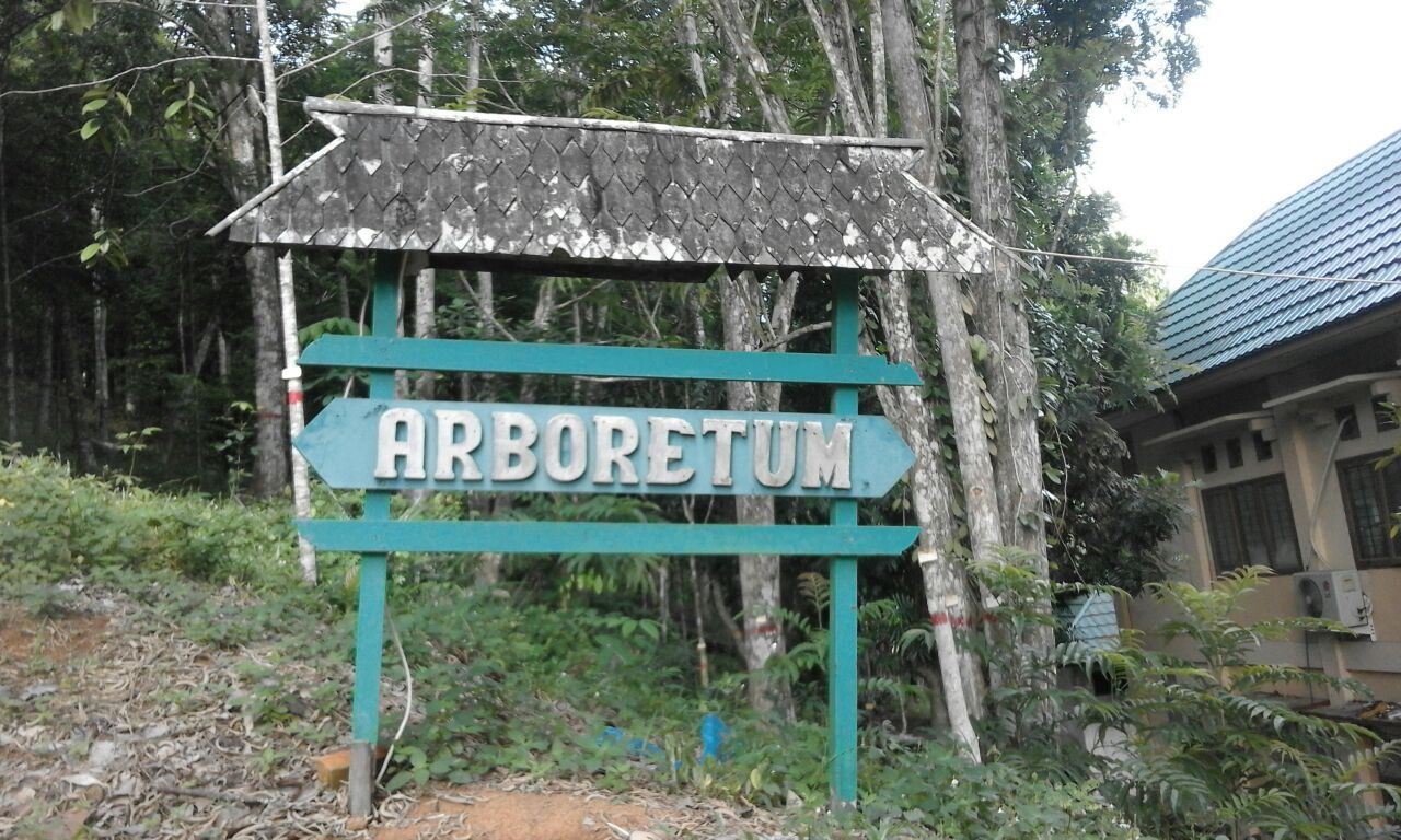 Arboretum Sempaja Perannya Memperbaiki Kualitas Udara B2p2ehd Samarinda 23 6
