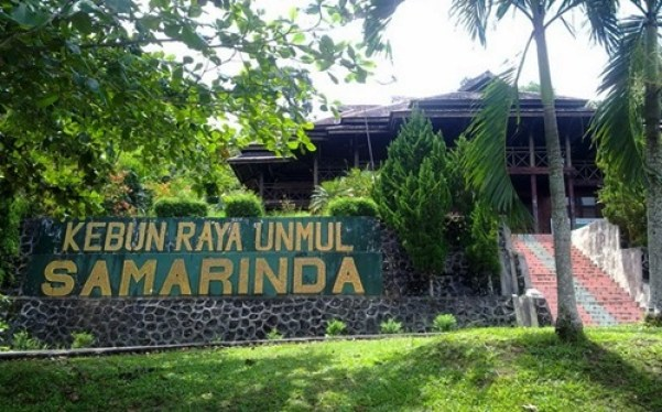 Samarinda City Marioga Tour Travel Mini Zoo Museum Timber Information
