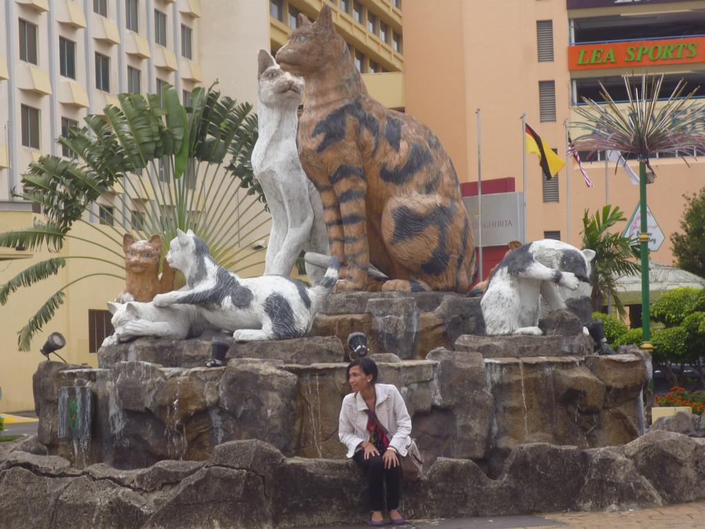 Rahasia Dibalik Warna Patung Kucing Kota Kuching Gubuk Geokku Pesut