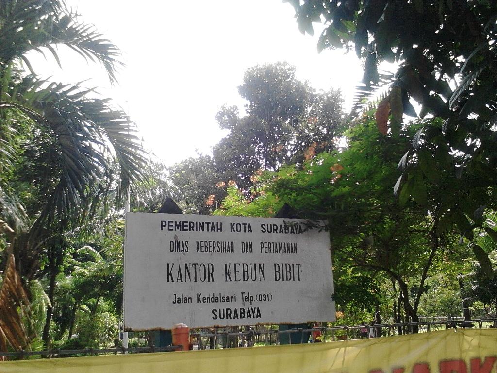 Ayo Kebun Bibit 2 Wonorejo Surabaya Catatan Harian Qc Inspector