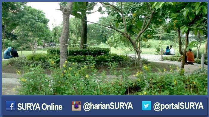 Duh Siang Bermesraan Kebun Bibit Wonorejo Surabaya Foto Buktinya Kota