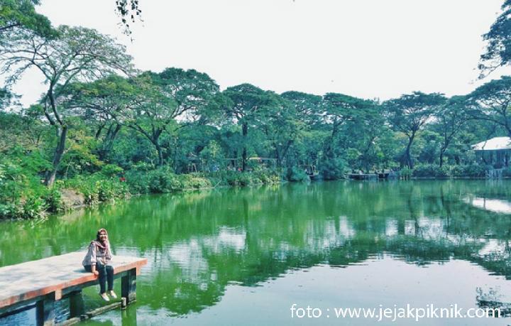 Inilah 5 Tempat Wisata Tersembunyi Surabaya Travel Kebun Bibit Wonorejo