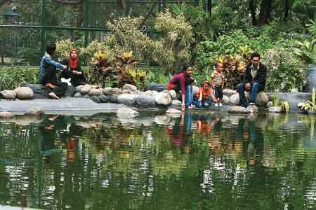 Kebom Bibit Taman Flora Ayo Jadikan Tubuh Kita Sehat Soman1