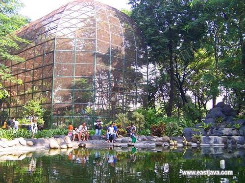 Kebun Bibit Surabaya East Java Flickr Eastjava Kota