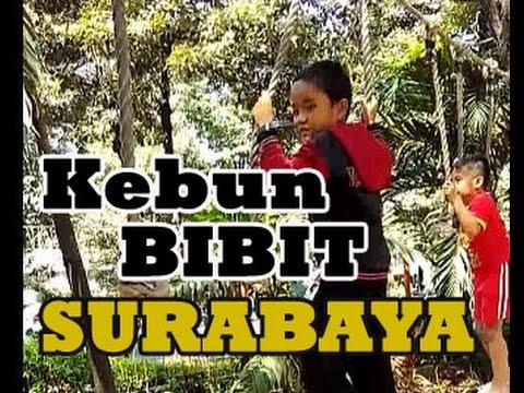 Kebun Bibit Surabaya Jalan Youtube Kota