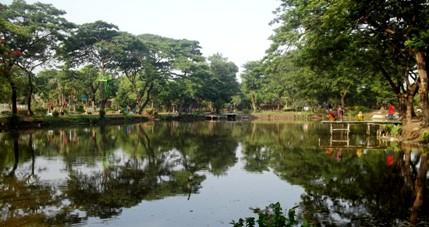 Kebun Bibit Surabaya Jawa Timur Wongcrewchild Alamat Kota
