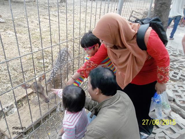 Kebun Bibit Surabaya Sambut Hhd 2015 Oleh Mawan Sidarta Kompasiana