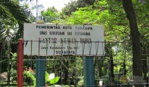 Kebun Bibit Wonorejo Lokasi Wisata Murah Komplit Kabar Surabaya Kota