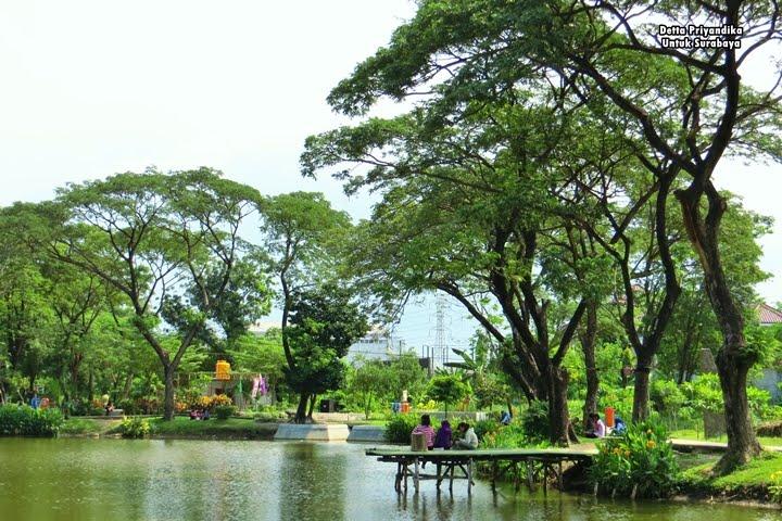Kebun Bibit Wonorejo Lokasi Wisata Murah Komplit Kebunbibit Surabaya Kota