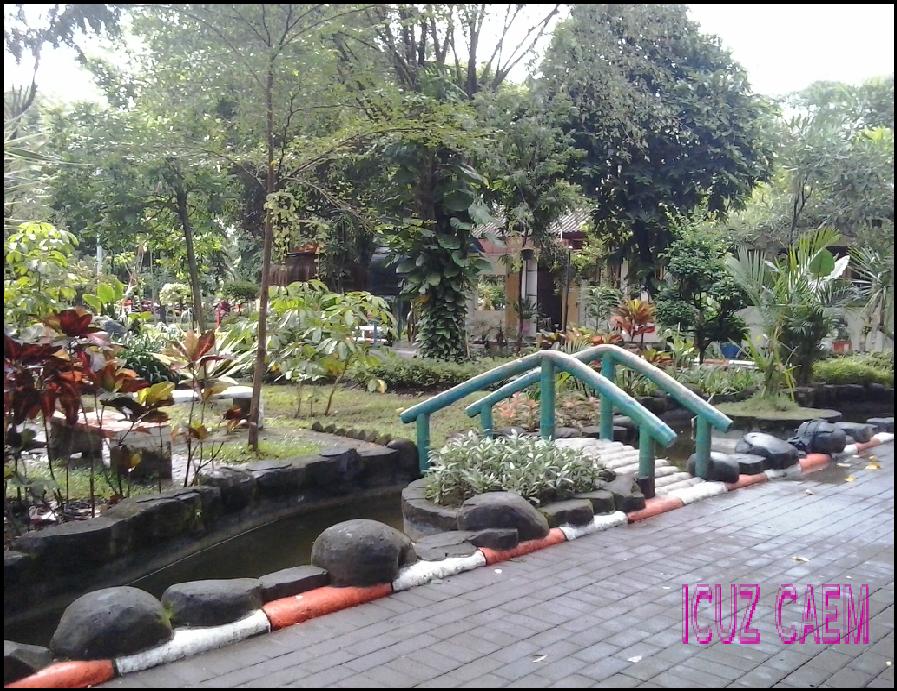 Kebun Bibit Wonorejo Surabaya Suci World Lantana051715 2317051715 2320051715 2323051715