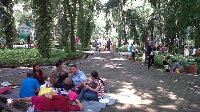 Sejuknya Kebun Bibit Surabaya Pilihan Keluarga Surya Kota