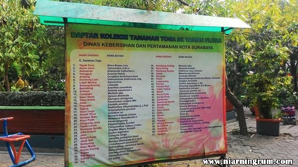 Surabaya Asyiknya Kebun Bibit Bikin Kamu Wajib Kota