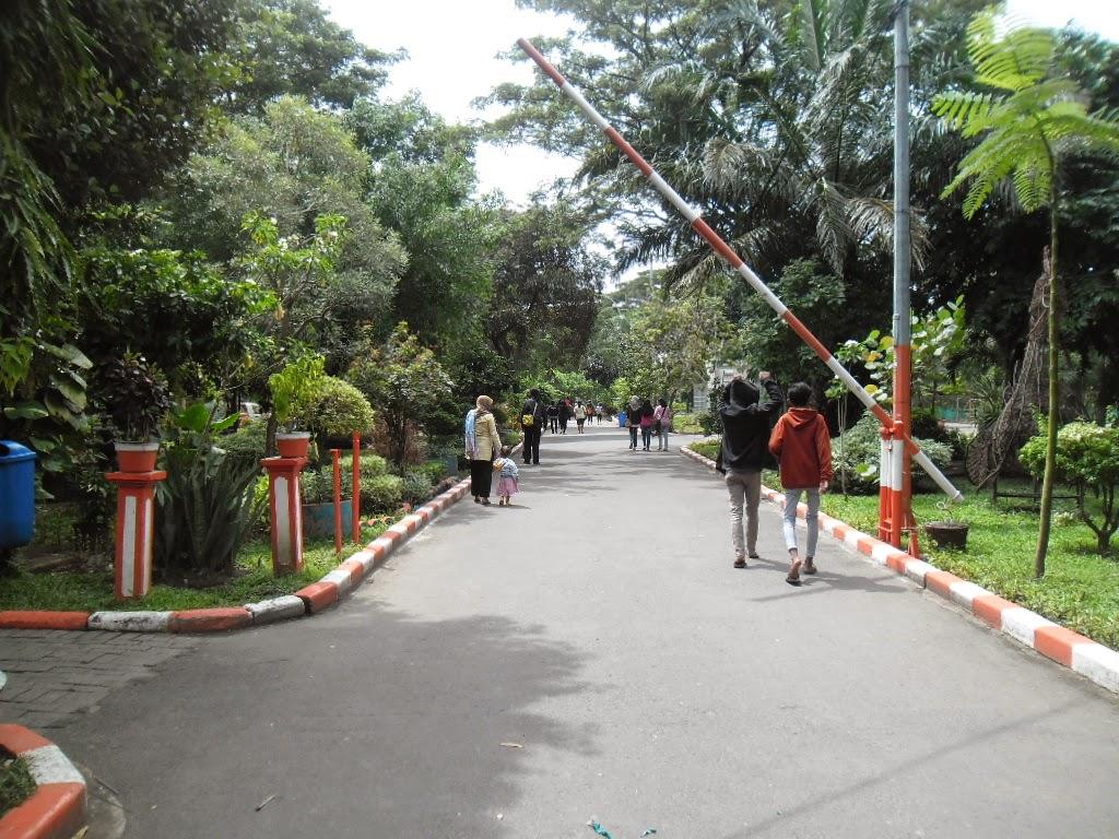 Surabaya Bagus Kebun Bibit Wonorejo Ya Bratang Memang Melegenda Bukan