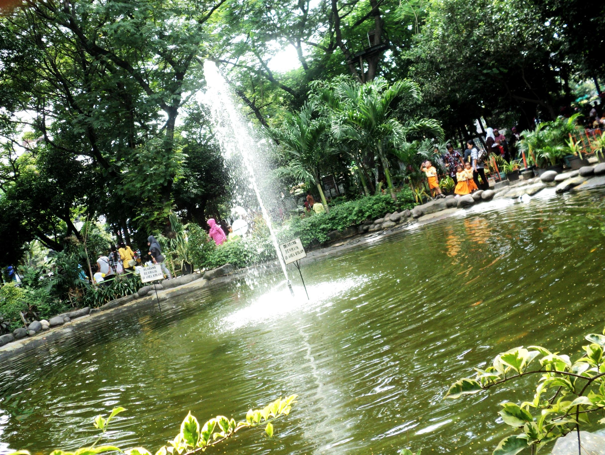 Taman Kebun Bibit Surabaya Danoe Frame Bagi Masyarakat Sekitarnya Nama