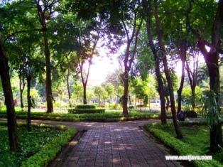 Upaya Dkp Surabaya Cukupi Kebutuhan Listrik Kebun Bibit Bratang Wonorejo