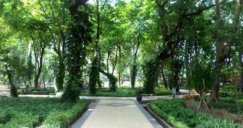 Wisata Murah Taman Flora Surabaya Jatim Terakhir Wajah Kota Semakin